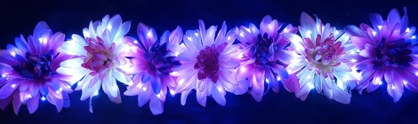 Row of LED Hair Flowers